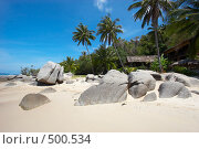 Купить «Тропический пейзаж», фото № 500534, снято 18 марта 2008 г. (c) Алексей Корсаков / Фотобанк Лори