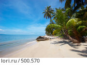 Купить «Тропический пейзаж», фото № 500570, снято 18 марта 2008 г. (c) Алексей Корсаков / Фотобанк Лори
