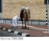 Бедуин в пути (2008 год). Стоковое фото, фотограф Azaria Iounaev / Фотобанк Лори