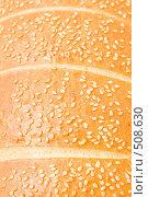 Купить «Батон с кунжутом, фон», фото № 508630, снято 26 сентября 2008 г. (c) Ольга Красавина / Фотобанк Лори