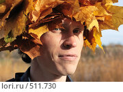 Купить «Шапка из листьев», фото № 511730, снято 9 октября 2008 г. (c) Сергей Халадад / Фотобанк Лори