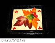 Купить «Осенний портрет», фото № 512178, снято 12 октября 2008 г. (c) Татьяна Лепилова / Фотобанк Лори