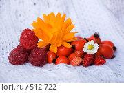 Купить «Народная медицина», фото № 512722, снято 18 октября 2008 г. (c) Игорь Качан / Фотобанк Лори