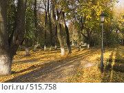 Купить «Осень, листопад», фото № 515758, снято 12 октября 2008 г. (c) Роман Коротаев / Фотобанк Лори