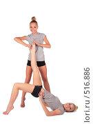 Купить «Девушки-близняшки занимаются физическими упражнениями», фото № 516886, снято 22 апреля 2019 г. (c) Losevsky Pavel / Фотобанк Лори