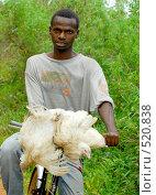 Купить «Молодой африканец», фото № 520838, снято 24 февраля 2008 г. (c) Марина Коробанова / Фотобанк Лори
