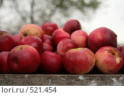 Купить «Красные яблоки на садовом столе», фото № 521454, снято 18 октября 2008 г. (c) Yevgeniy Zateychuk / Фотобанк Лори