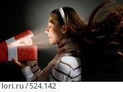 Купить «Рождественский подарок», фото № 524142, снято 29 сентября 2008 г. (c) Константин Юганов / Фотобанк Лори
