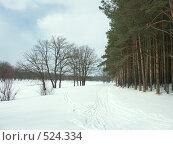 Купить «Зимняя сказка», фото № 524334, снято 16 марта 2005 г. (c) Сергей Бехтерев / Фотобанк Лори