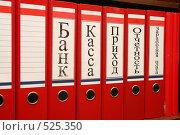 Купить «Папки с бухгалтерскими документами», фото № 525350, снято 25 октября 2008 г. (c) Андрей Батурин / Фотобанк Лори