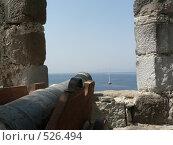 Пушка в Крепости  святого Петра (2006 год). Стоковое фото, фотограф Николаенкова Светлана / Фотобанк Лори