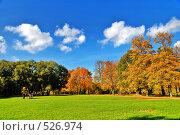 Золотая осень в парке. Стоковое фото, фотограф Артем Костров / Фотобанк Лори