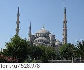 Стамбул. Турция. Голубая мечеть. Blue Mosk (2008 год). Стоковое фото, фотограф Николаенкова Светлана / Фотобанк Лори