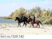 Купить «Донские казаки скачут верхом на конях», фото № 529142, снято 12 октября 2008 г. (c) Виктор Филиппович Погонцев / Фотобанк Лори