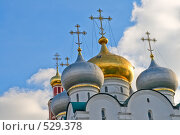Купить «Купола храма Новодевичьего монастыря», фото № 529378, снято 25 октября 2008 г. (c) Владимир Казарин / Фотобанк Лори