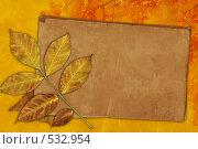 Ретро фон с осенними листьями. Стоковое фото, фотограф Лукиянова Наталья / Фотобанк Лори