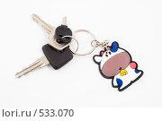 Купить «Брелок бычок с ключами от машины», эксклюзивное фото № 533070, снято 29 октября 2008 г. (c) Александр Щепин / Фотобанк Лори