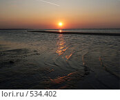 Купить «Закат на море, отлив», фото № 534402, снято 27 сентября 2008 г. (c) Роман Мельник / Фотобанк Лори