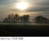 Купить «Стелющийся утренний туман», фото № 534566, снято 21 октября 2008 г. (c) Роман Мельник / Фотобанк Лори