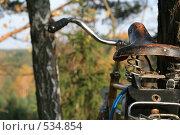 Велосипед. Стоковое фото, фотограф Аврам / Фотобанк Лори