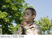 Купить «Мальчик и одуванчик», фото № 535194, снято 3 мая 2008 г. (c) Садыхова Леся / Фотобанк Лори