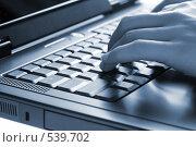 Купить «Руки на клавиатуре», фото № 539702, снято 10 июля 2008 г. (c) podfoto / Фотобанк Лори