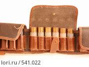Купить «Приоткрытый патронташ», фото № 541022, снято 3 ноября 2008 г. (c) Игорь Веснинов / Фотобанк Лори
