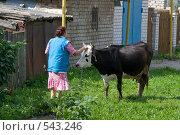 Купить «Женщина с коровой», фото № 543246, снято 23 августа 2008 г. (c) Ярослава Синицына / Фотобанк Лори