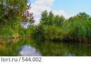 Приток Днепра. Стоковое фото, фотограф Антон Коршунов / Фотобанк Лори