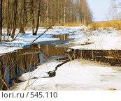 Купить «Весенний ручей», фото № 545110, снято 23 января 2019 г. (c) Вадим Кондратенков / Фотобанк Лори