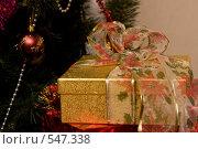 Купить «Подарок под елкой», фото № 547338, снято 6 ноября 2008 г. (c) Ольга Хорькова / Фотобанк Лори