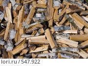 Купить «Березовые дрова Birch fire wood», фото № 547922, снято 4 октября 2008 г. (c) Андрей Короткевич / Фотобанк Лори