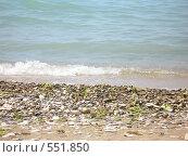 Купить «Море», фото № 551850, снято 14 июня 2008 г. (c) Виктор  Батавин / Фотобанк Лори
