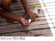 Рыба. Стоковое фото, фотограф Алексей Калашников / Фотобанк Лори