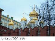 Купола Кремля (2007 год). Стоковое фото, фотограф Борис Двойников / Фотобанк Лори