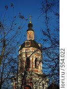 Донской монастырь в Москве (2008 год). Стоковое фото, фотограф Власов Виктор Валентинович / Фотобанк Лори