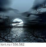 Купить «Ночной пейзаж», иллюстрация № 556582 (c) ElenArt / Фотобанк Лори