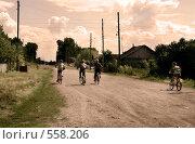 Купить «Деревенская улица», фото № 558206, снято 31 июля 2008 г. (c) Александр Ерёмин / Фотобанк Лори