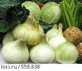 Купить «Лук репчатый на прилавке вместе с другими овощами», фото № 559838, снято 26 июля 2008 г. (c) Светлана Кудрина / Фотобанк Лори