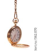 Купить «Золотые карманные часы с цепочкой», фото № 562070, снято 27 октября 2008 г. (c) Николай Михальченко / Фотобанк Лори