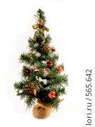 Купить «Новогодняя елка», фото № 565642, снято 16 ноября 2008 г. (c) Юрий Беляков / Фотобанк Лори