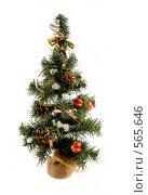 Купить «Новогодняя елка», фото № 565646, снято 16 ноября 2008 г. (c) Юрий Беляков / Фотобанк Лори