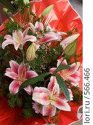 Купить «Букет лилий», фото № 566466, снято 14 ноября 2008 г. (c) Олег Гуличев / Фотобанк Лори