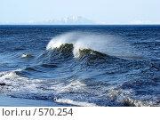 Купить «Волна с гребнем на Тихом океане», фото № 570254, снято 7 июня 2008 г. (c) Анатолий Никитин / Фотобанк Лори