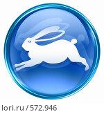 Купить «Символ года Кролик, изолировано на белом фоне», иллюстрация № 572946 (c) Андрей Зык / Фотобанк Лори