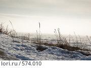 Зима. Берег Белого моря. Стоковое фото, фотограф Иван Алферов / Фотобанк Лори