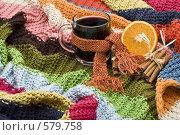 Купить «Чашка с глинтвейном, обвязанная шарфиком, на фоне вязаного пледа», фото № 579758, снято 20 ноября 2008 г. (c) Лисовская Наталья / Фотобанк Лори