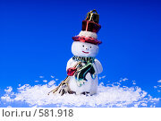 Купить «Елочная игрушка снеговик», эксклюзивное фото № 581918, снято 26 января 2006 г. (c) Сайганов Александр / Фотобанк Лори