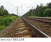 Купить «Железная дорога», фото № 583218, снято 10 июня 2008 г. (c) Евгений Перов / Фотобанк Лори