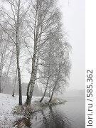 Первый снег. Балашиха 2008г, эксклюзивное фото № 585362, снято 20 ноября 2008 г. (c) Дмитрий Нейман / Фотобанк Лори